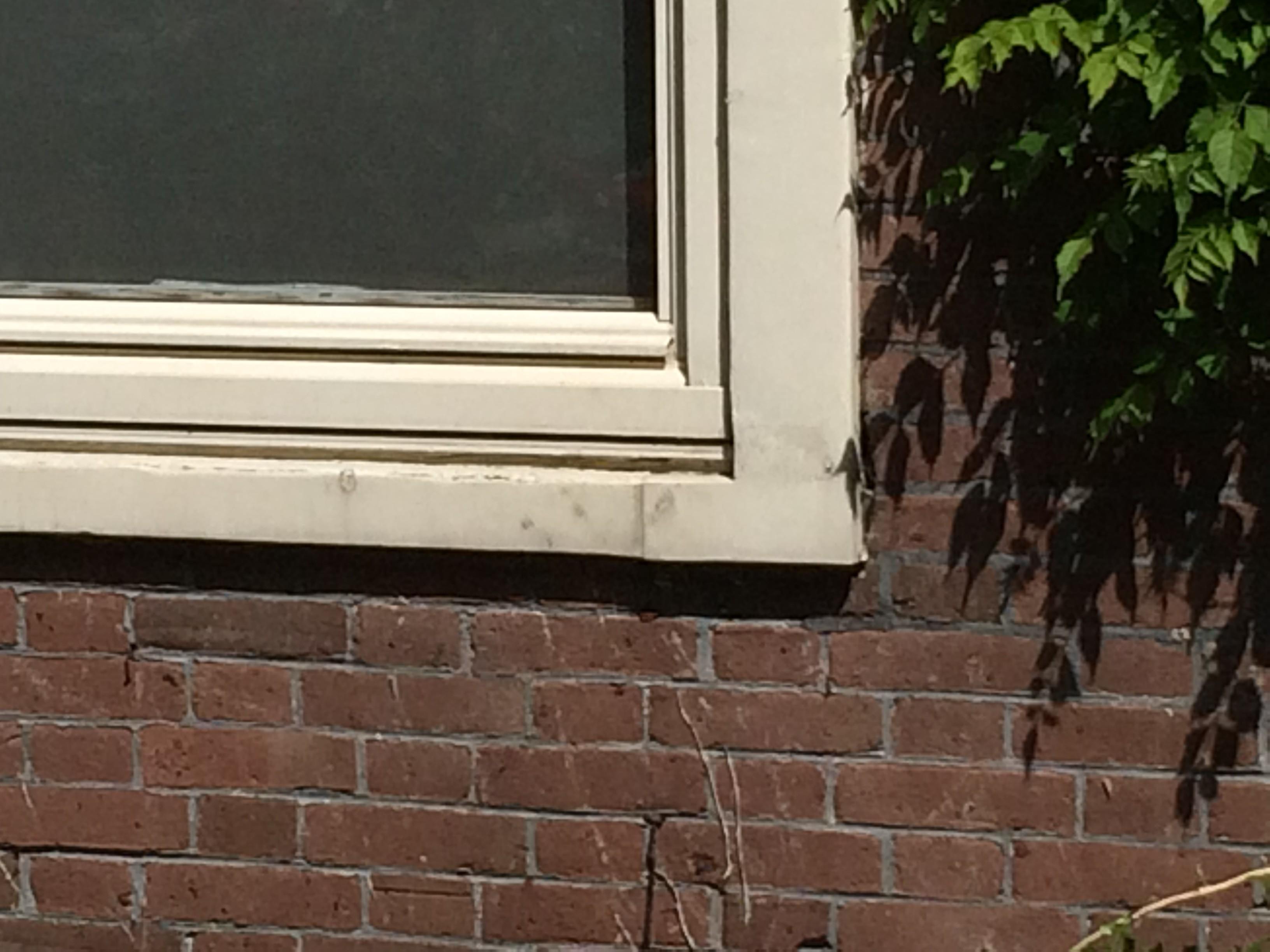 BKT_Ymere_amsterdam_vechtstraat_balkon_renovatie_schilderwerk_houtrot_planmatig_onderhoud_07.jpg